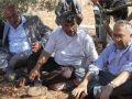 عساف: سنزرع 1000 شجرة مقابل كل شجرة يقتلعها الاحتلال