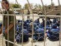 4600 أسير في سجون الاحتلال