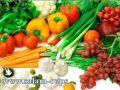 """زراعة طولكرم تنفذ محاضرة حول """"العادات الغذائية السيئة وكيفية تجنبها"""""""