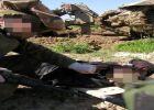 الاحتلال يحتجز جثامين 19 شهيداً قضوا في الحرب الأخيرة