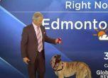فيديو: مشهد مضحك بين كلب ومذيع نشرة جوية