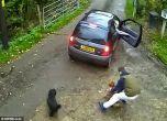 شاهد : 3.5 مليون مشاهدة لـ فيديو سرقة كلبين