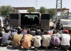 الاحتلال يحتجز 85 عاملًا من جنين أثناء تواجدهم في طبريا داخل أراضي الـ48