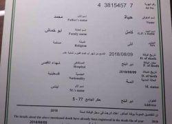 في غزة .. شهادة وفاة لجنين قتلته إسرائيل قبل أن يُولد!