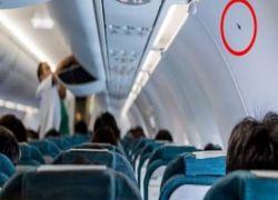 ماذا تعني هذه المثلثات الصغيرة داخل الطائرات؟