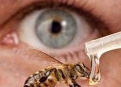 لمن يعتقد أن العسل مفيد للعينين..اقرا هذا الخبر !