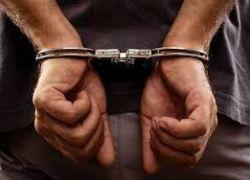 الشرطة تكشف قضية تزوير وكالات بيع أراضِ بنابلس