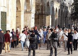 عشية أعياد اليهود- وزير الزراعة الاسرائيلي يقتحم الأقصى