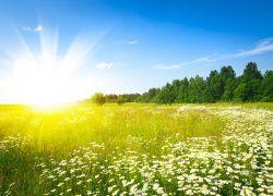حالة الطقس : ارتفاع على درجات الحرارة اليوم وأمطار متفرقة غداً