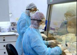 الشخرة: ظهور إصابات بسلالتين من كورونا في آن واحد بفلسطين