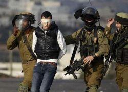 قوات الاحتلال تعتقل 11 مواطنا من الضفة
