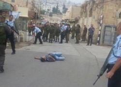 رئيس البرلمان العربي: تصفية الفلسطينيين في الشوارع عمل اجرامي