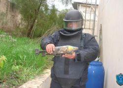 الشرطة تتلف 9 قنابل يدوية قديمة في طولكرم