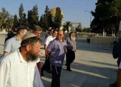 90 مستوطنا يقتحمون المسجد الأقصى صباح اليوم