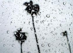 كميات الأمطار الهاطلة حتى صبيحة الإثنين 17/02/2020