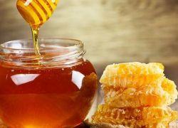 دراسة جديدة .. العسل يحارب السرطان