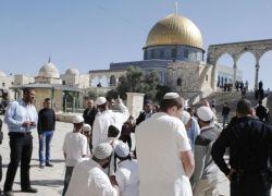 """محكمة إسرائيلية تسمح لليهود بالصراخ في الأقصى بعبارة """"شعب اسرائيل حي"""""""