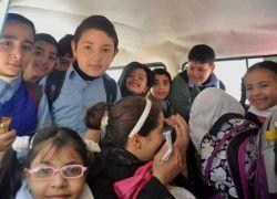 """""""النقل والمواصلات"""" تضبط حافلة مدرسية حمولة 55 طالب وبداخلها 75 في طولكرم"""