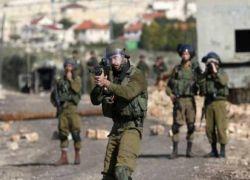 طولكرم: الاحتلال يصيب شابا وزوجته بالرصاص عند بوابة جدار الفصل ويعتقله