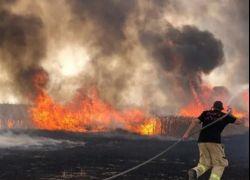 اسرائيل: موجة الحر اسفرت عن احتراق 15 ألف دونم و50 منزلا