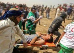54 مصابا من جرحى المجزرة بغزة في حالة موت سريري