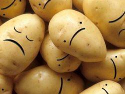 """علماء: أغلبية البطاطا في العالم تعاني من """"الاكتئاب الشديد""""!"""