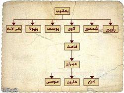 مقارنة تاريخية - بقلم : ياسر فقهاء