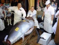 بالفيديو .. عندما يبتسم القدر .. حكاية بائع سمك تحول إلى مليونير