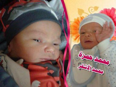 تهنئة بالمولود البكر محمد حمزة الأشقر