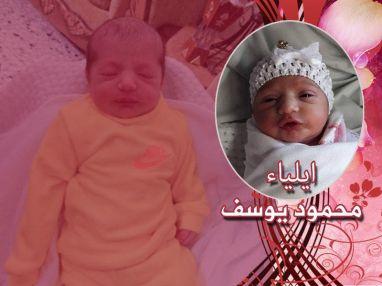 تهنئة بالمولودة البكر ايلياء محمود نضال يوسف مسكاوي
