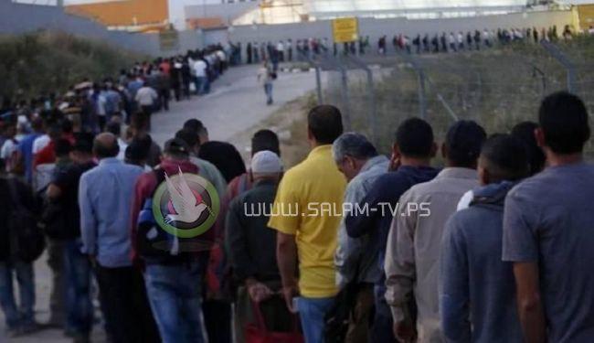 تقرير: ارتفاع عدد سكان غزة المسموح لهم بالعمل في اسرائيل