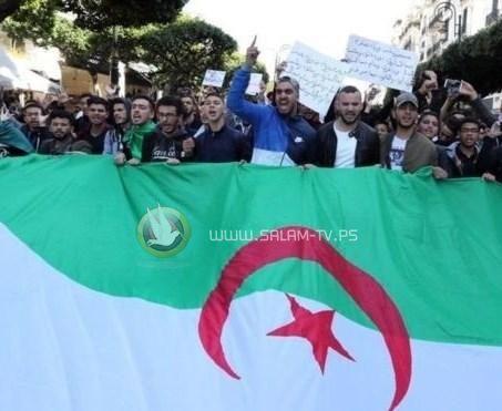 الجزائر: مظاهرات حاشدة قبل الانتخابات الرئاسية