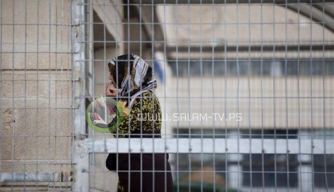 الاحتلال يفرج عن فيروز نعالوة بغرامة مالية
