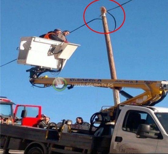 قام بعض أحد العمال : انقاذ قط مغامر صعد الى قمة عامود كهرباء في نابلس