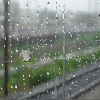 عاد الشتاء - بقلم : عبير حامد