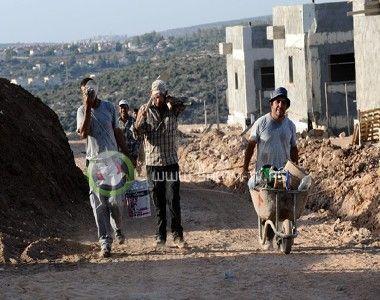 الاحتلال يصدر 10 آلاف تصريح للعمل في الداخل