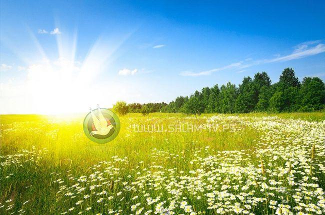 حالة الطقس : درجات الحرارة أعلى من معدلها السنوي بحدود درجتين