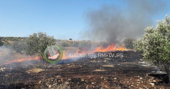 مستوطنون يحرقون بيوتا بلاستيكية في كفا جنوب شرق طولكرم
