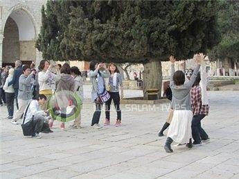 الليلة- عروض مسرحية راقصة للمستوطنين في باب الخليل بالقدس