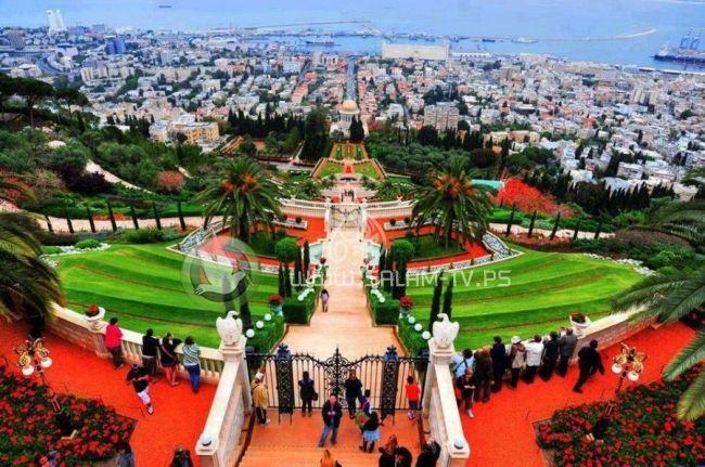 155 مليون شيكل للحد من تلوث الهواء في مدينة حيفا