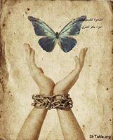 الحرية : بقلم : اسراء ماهر المصري