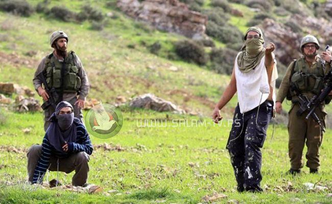 مستوطنون يهاجمون منازل المواطنين في بلدة عصيرة القبلية جنوب نابلس