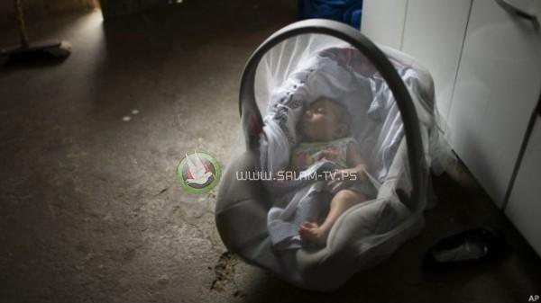 4 حالات مصابة بفيروس زيكا فى إسرائيل