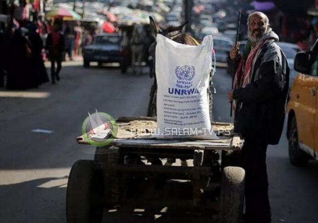 الولايات المتحدة: سنعمل على مساعدة فلسطين بما فيها الأونروا