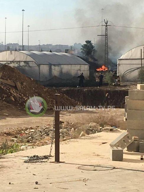 حالات اختناق في مواجهات مع الاحتلال شمال طولكرم