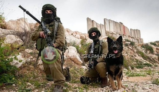 الجيش الاسرائيلي يستدعي كتائب جديدة ووحدات جفعاتي الى الضفة