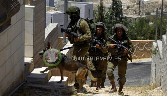السرقة... سلوك ينتهجه جنود الاحتلال خلال الاقتحامات وعلى الحواجز