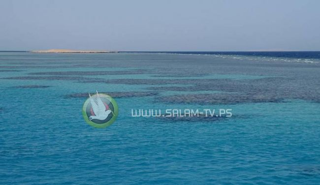 فقدان خمسة أردنيين في البحر الأحمر قرب تبوك السعودية