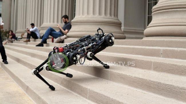 """روبوت """"أعمى"""" يتسلق السلالم ويتجاوز العقبات دون كاميرات"""